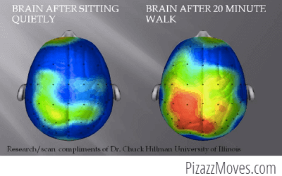 Does Your Brain Require Exercise?