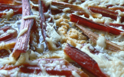 Parmesan Baked Swiss Chard Stems
